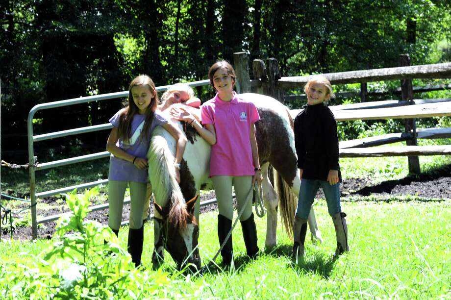 From left, Layne Kiratsous, Ella Peel, Annie Wilson and Avery Schauder, pats a horse at Country Lane Farm's John Street Barn in Greenwich, Conn., Wednesday, August 14, 2013. Photo: Helen Neafsey / Greenwich Time