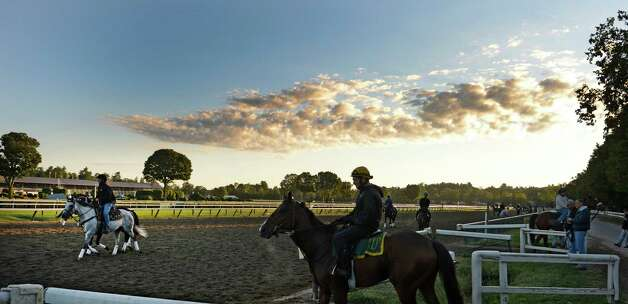 Horses from the Pletcher and Lerman racing stables go out for their morning exercise in the crisp cool air of Aug. 15, 2013 at the Saratoga Race Course in Saratoga Springs, N.Y.   (Skip Dickstein/Times Union) Photo: SKIP DICKSTEIN
