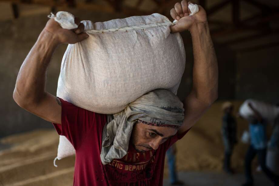 Brazil: A worker carries a sack of corn at a farm in Tucuma, Para state, northern Brazil. Photo: Yasuyoshi Chiba, AFP/Getty Images