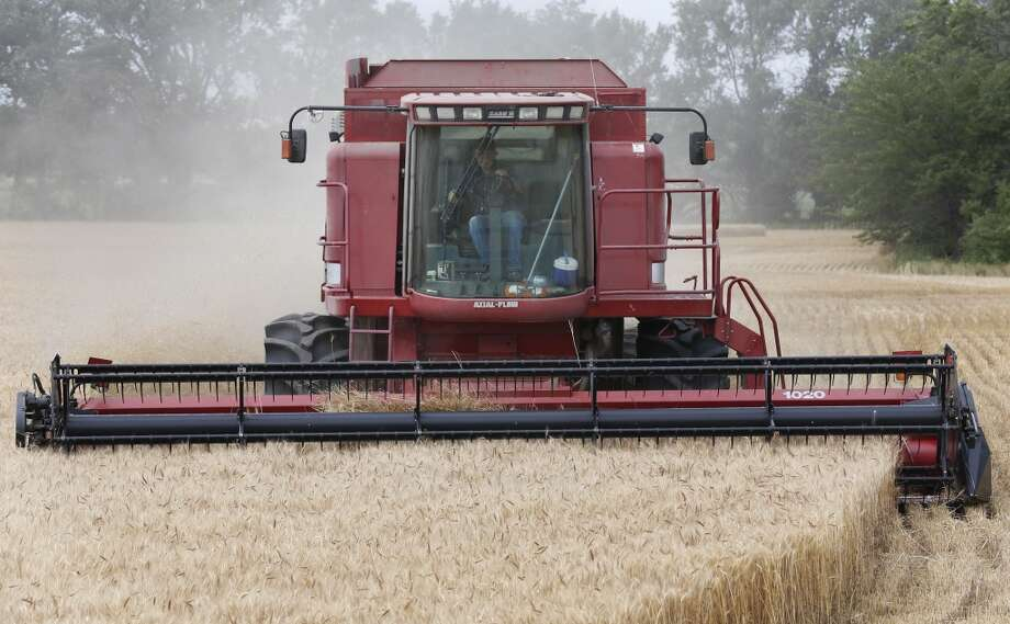 Kansas: Lester Reimer harvests wheat on his farm near Lebo, Kan. Photo: Orlin Wagner, Associated Press