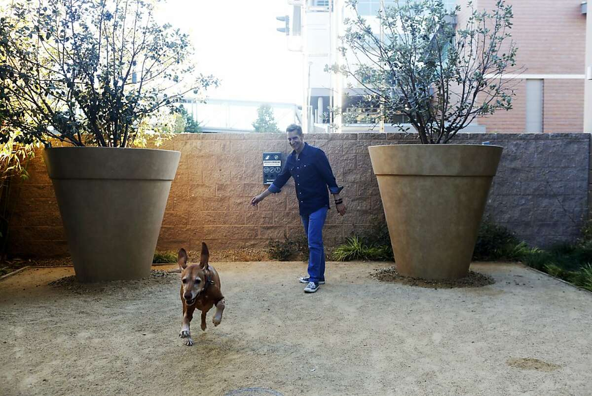 Grant Barth plays with his dog Otto at the dog park in their condominium in Oakland, Calif. on August 14, 2013.