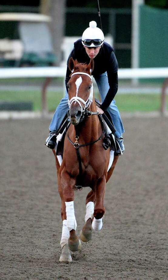 Alabama morning line favorite Princess of Sylmar gets her exercise during the early morning hours  of Aug. 15, 2013 at the Saratoga Race Course in Saratoga Springs, N.Y.   (Skip Dickstein/Times Union) Photo: SKIP DICKSTEIN