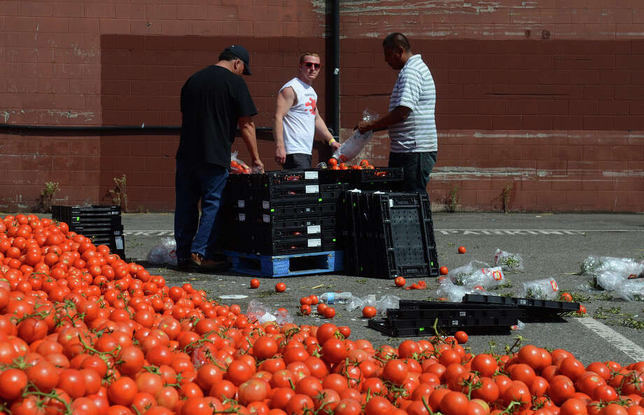 Workers prepare tomatoes during the 3rd annual Seattle Tomato Battle on Saturday, Aug. 17, 2013, at the Pyramid Brewery in Seattle. Photo: SY BEAN, SEATTLEPI.COM / SEATTLEPI.COM