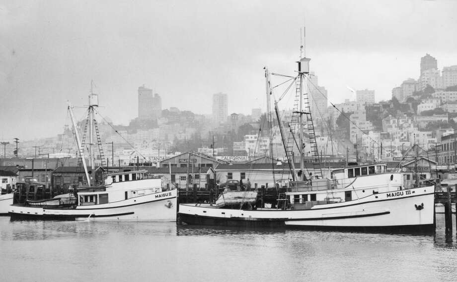 Refitted purse seiners are en route to the Persian Gulf to catch shrimp. December 22, 1957. Photo: Bill Young, The Chronicle