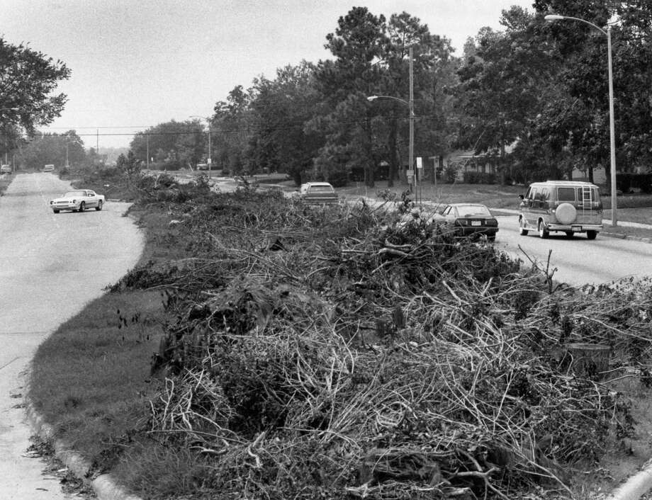 From the Sept. 18, 1983, Houston Chronicle: An esplanade in the 8600 block of Kempwood in the Spring Branch area stands covered with debris. Charles Ware, Houston Solid Waste Department director, says the city may be burdened with 8 million cubic yards of debris -- and that it could take a year and $35 million to $40 million to remove it. Photo: Darrell Davidson, Houston Chronicle