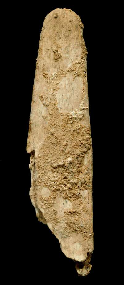 This undated photo provided Monday, Aug.12, 2013, by Abri Peyrony Project shows the most complete lissoir, or smoothing tool made of bone, smaller that a person's hand at just a few centimeters long, found during excavations at the Neanderthal site of Abri Peyrony. Researchers have found what they say are the first examples of specialized bone tools made by Neanderthals, a discovery that will add to debates about how advanced Neanderthals were and how much contact they had with modern humans. The discovery is being discussed by scientist, researchers and academics after the findings were published online Monday by the Proceedings of the National Academy of Sciences. Photo: AP