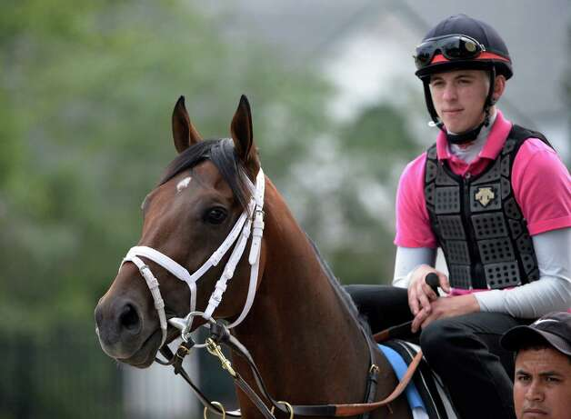Exercise Rider Jake Nelson sits atop Palace Malice before his had his final prep work for Saturday's Travers Stakes Aug 18, 2013 at the Saratoga Race Course in Saratoga Springs, N.Y.    (Skip Dickstein/Times Union) Photo: SKIP DICKSTEIN