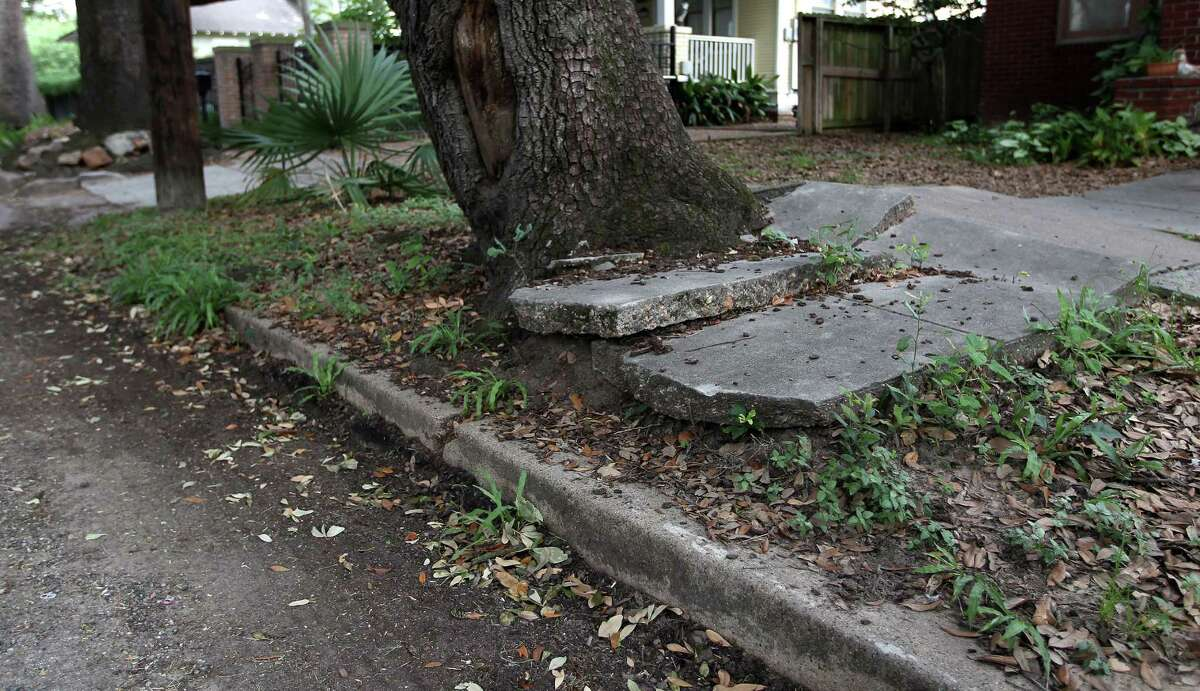 """""""How do you handle neighborhoods where sidewalks are being chewed up by tree root systems?"""" Councilman Stephen Costello asked about a pilot program that would set a per-foot price for sidewalk replacement. Above is a walk in Woodland Heights."""