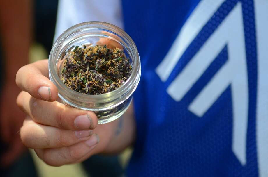 An attendee shows off his marijuana on the second day of Seattle Hempfest Saturday, Aug. 17, 2013, at Myrtle Edwards Park in Seattle. This is the first year for the annual pro-pot rally since Washington State voters legalized recreational use of marijuana. (Sy Bean, seattlepi.com) Photo: SY BEAN, SEATTLEPI.COM