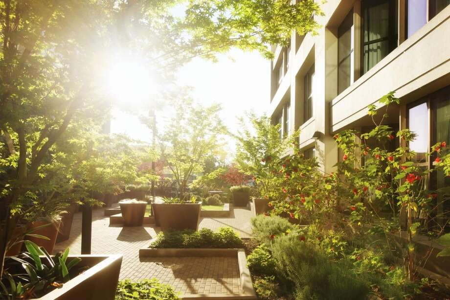 The Bond's outdoor courtyard offers a greenspace retreat. Photo: Patrik Argast, Patrik Argast, Courtesy Of PolarisPacific