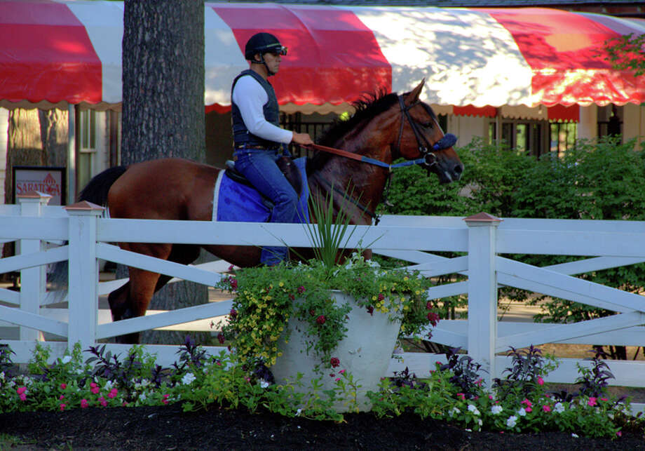 Saratoga Race Track, returning to the stables after morning workouts. (Pat Marzinsky) Photo: Patricia Marzinsky, @2013 Pat Marzinsky / @2013 Pat Marzinsky