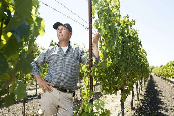Sonoma shows a talent for less-known whites