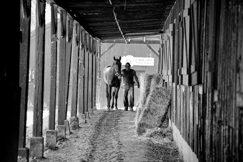 "The winner of the second of the Times Union's 2013 track photo contest is Debbie Krohl of Clifton Park for  ""Time for a Walk,"" captured t the Oklahoma Track on Aug 10 at D Wayne Lukas' stables at the Saratoga Race Course. (Debbie Krohl/submitted photo)"