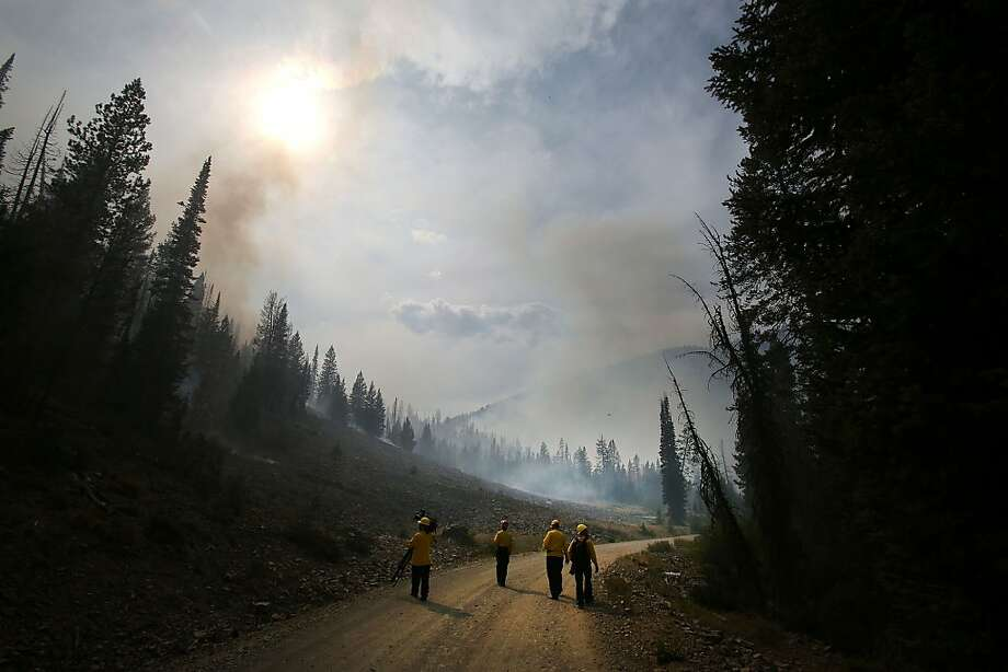 Burn zone: Members of the media tour a few of the 104,457 acres scorched by the Beaver Creek Fire in the Baker Creek area north of Ketchum, Idaho. Photo: Ashley Smith, Associated Press