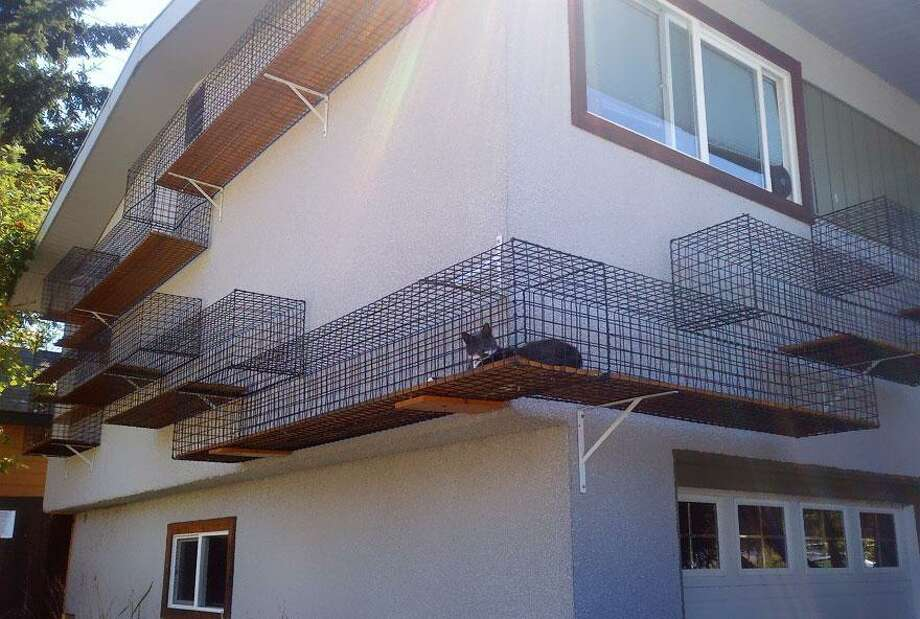 This creative homeowner built walkways around the house so the cat could get some fresh air without ever really leaving the house. Check with your homeowners association before adding these types of enclosures to your house.