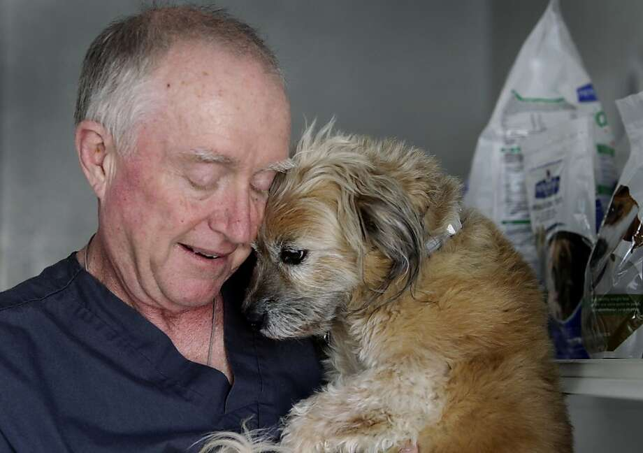 Dr. Don Conkling, 63, who has had high blood pressure since his early 40s, is now able to keep his hypertension under control. He walks with his dog Sophie multiple times a day. Photo: Paul Chinn, The Chronicle