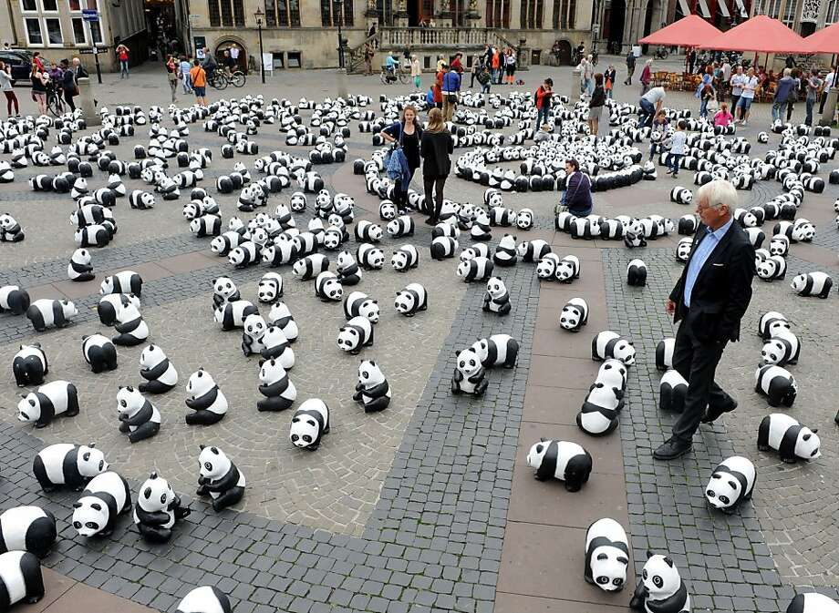 Panda figures are displayed on a market place in Bremen, northern Germany, on August 20, 2013. The environmental organisation WWF Germany (World Wildlife Fund) wants to draw attention to the shriniking number of just 1600 animals left of this endangered specie. AFP PHOTO / DPA/ INGO WAGNER   GERMANY OUTINGO WAGNER/AFP/Getty Images Photo: Ingo Wagner, AFP/Getty Images