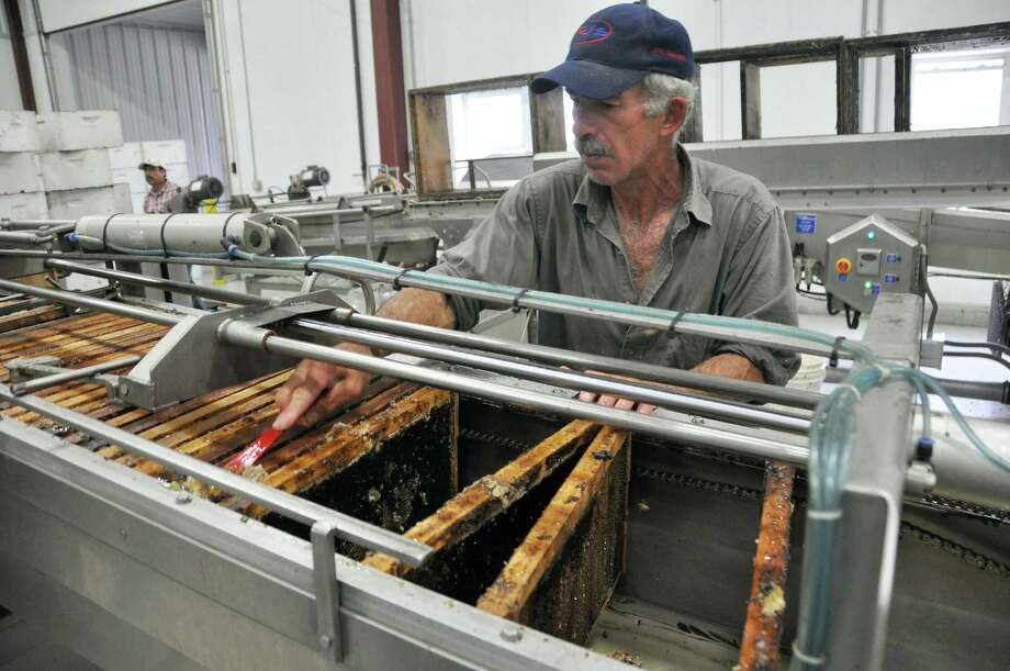 Jaime Garcia scrapes honey off a frame at the Adee Honey Farms plant in Bruce, S.D., Tuesday, Aug. 20, 2013. Honey extractors in South Dakota and the eastern part of North Dakota say cool summer temperatures over the past month have slowed production. (AP Photo/Dirk Lammers) ORG XMIT: RPDL101 Photo: Dirk Lammers / AP