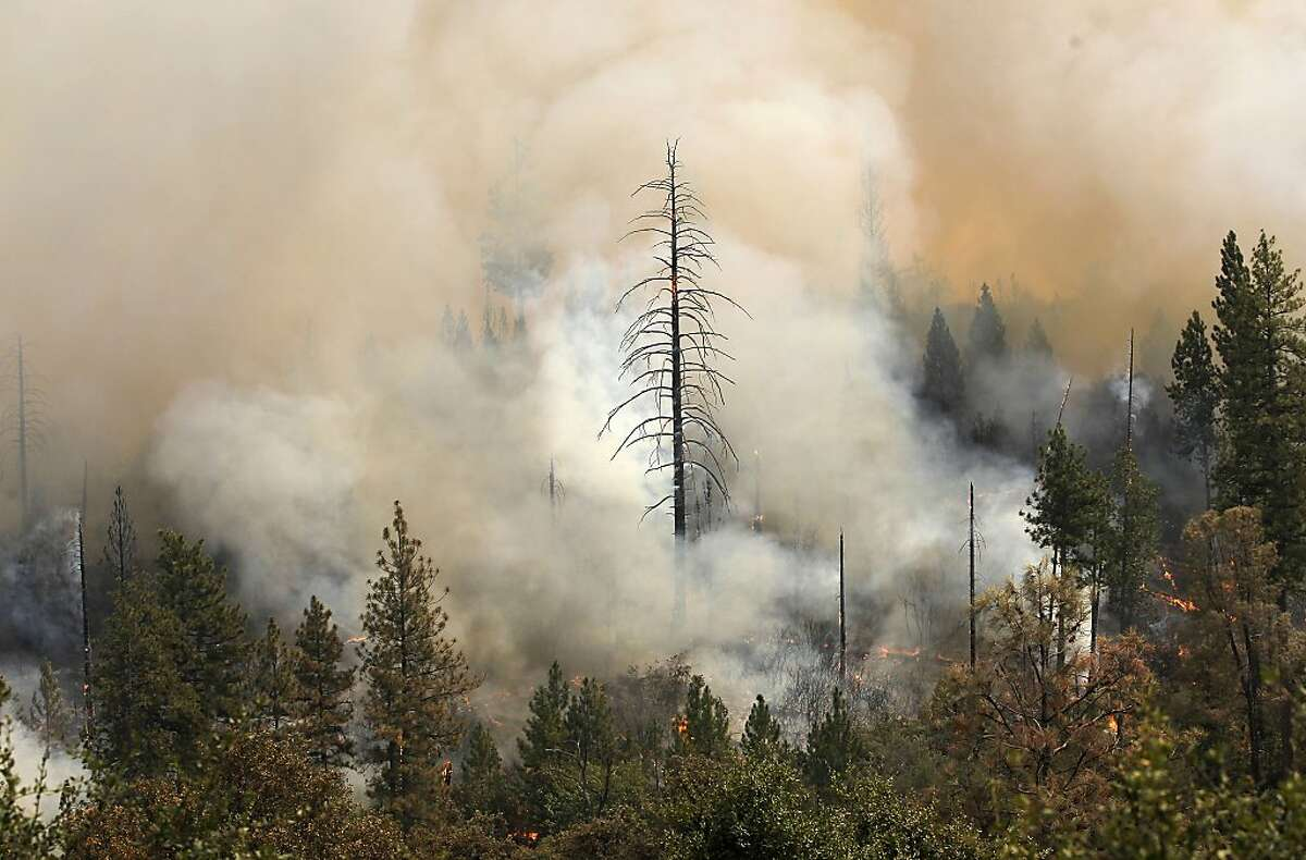 Fire burns near the Tuolumne Trails resort off Ferretti Rd. in Groveland, Ca., as the 16,000 acre Rim Fire continues to grow on Wednesday August 21, 2013.