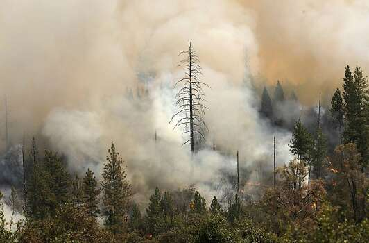 Fire burns near the Tuolumne Trails resort off Ferretti Rd. in Groveland, Ca., as the 16,000 acre Rim Fire continues to grow on Wednesday August 21, 2013. Photo: Michael Macor, San Francisco Chronicle