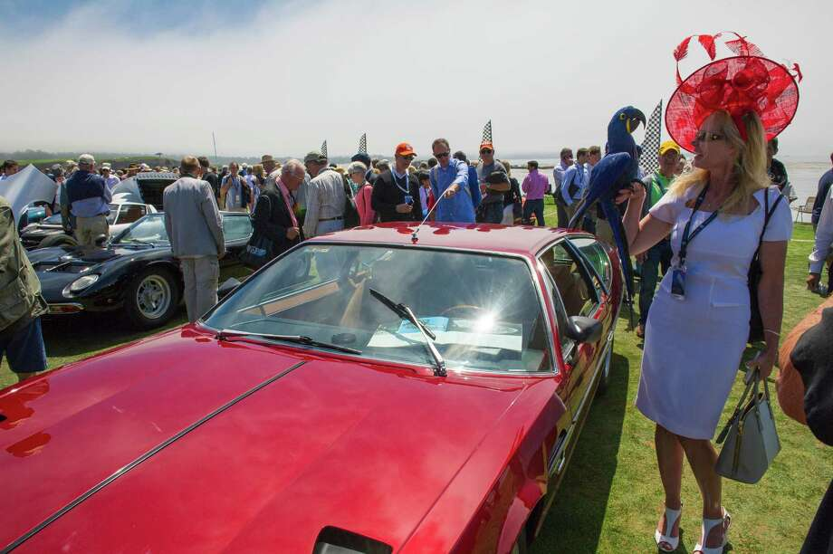 Attendee Lori Halvorson holds Tuk, a 4 year old Hyacinth bird, during the 2013 Pebble Beach Concours d' Elegance in Pebble Beach, California, U.S., on Sunday, Aug. 18, 2013. The annual event in its 63rd year raised $1.277 million U.S. dollars for charity and showcased 248 cars, 48 from abroad. Photographer: Photo: David Paul Morris, Bloomberg / 2013 Bloomberg Finance LP