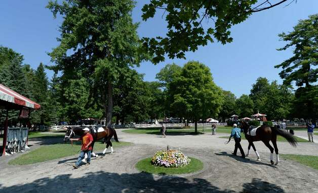 Palace Malice and Verrazano school in the paddock of the Saratoga Race Course Aug 21, 2013in Saratoga Springs, N.Y.   Verrazano has been put in place as the morning line favorite to win the Travers Stakes which will run on Saturday at Saratoga.  (Skip Dickstein/Times Union) Photo: SKIP DICKSTEIN