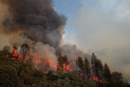 Fire consumes trees along US highway 120 as the Rim Fire burns out of control on August 21, 2013 in Groveland, California. The Rim Fire continues to burn out of control and threatens 2,500 homes outside of Yosemite National Park. Over 400 firefighters are battling the blaze that is only 5 percent contained. Photo: Justin Sullivan, Getty Images / 2013 Getty Images