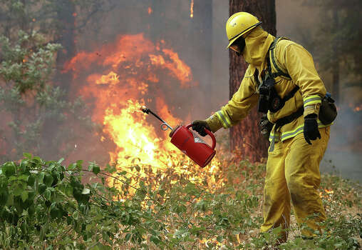 A firefighter from Ebbetts Pass Fire District uses a drip torch to light a back fire as they battle the Rim Fire on August 21, 2013 in Groveland, California. The Rim Fire continues to burn out of control and threatens 2,500 homes outside of Yosemite National Park. Over 400 firefighters are battling the blaze that is only 5 percent contained. Photo: Justin Sullivan, Getty Images / 2013 Getty Images