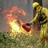 A firefighter from Ebbetts Pass Fire District uses a drip torch to light a back fire as they battle the Rim Fire on August 21, 2013 in Groveland, California. The Rim Fire continues to burn out of control and threatens 2,500 homes outside of Yosemite National Park. Over 400 firefighters are battling the blaze that is only 5 percent contained.