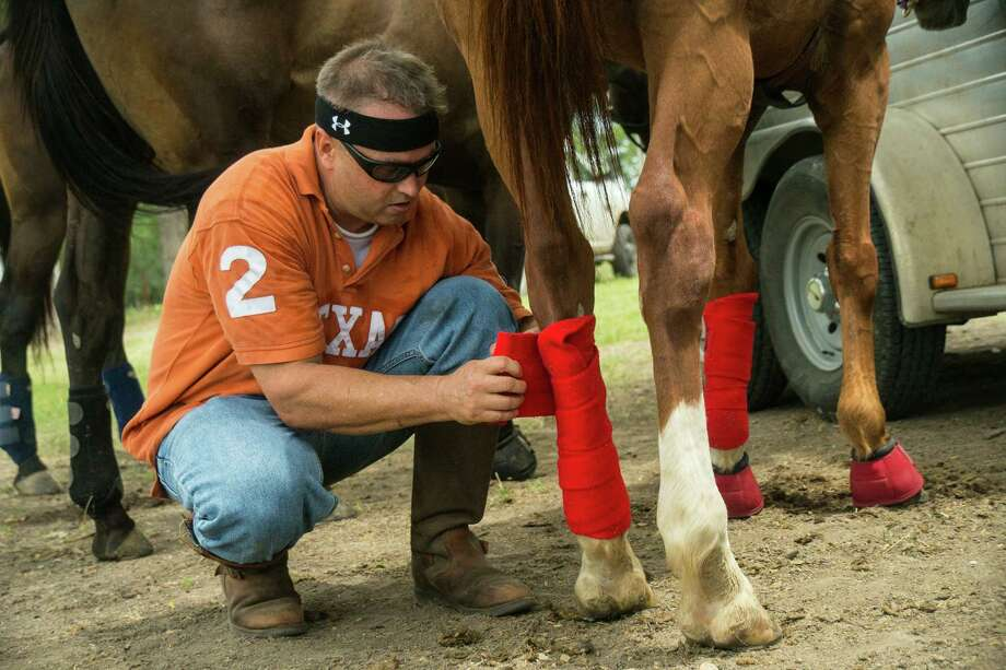 Karl Hilberg of the San Antonio Polo Club wraps the legs of one of his horses before a polo match. Leg wrapping is required equipment for all polo ponies. Photo by Joshua Trudell//For the Express-News Photo: Josh Trudell, Josh Trudell Photography / Copyright 2013 Josh Trudell Photography. All Rights Reserved.