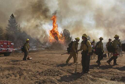 A fire crew works on a back-fire to prevent the wildfire from crossing Ferretti Rd. on Thursday August 22, 2013, as the Rim Fire has grown to over 36,000 acres in Groveland, Calif. Photo: Michael Macor, San Francisco Chronicle