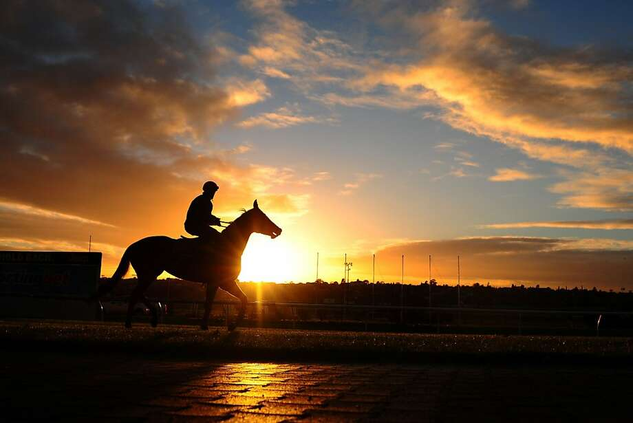 Dawn down under: Craig Williams works out Commanding Jewel at Moonee Valley Racecourse in Melbourne. Photo: Vince Caligiuri, Getty Images
