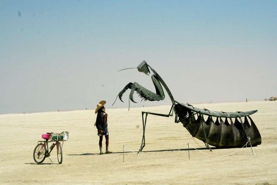Man meets mantis. Photo: Mark Morford