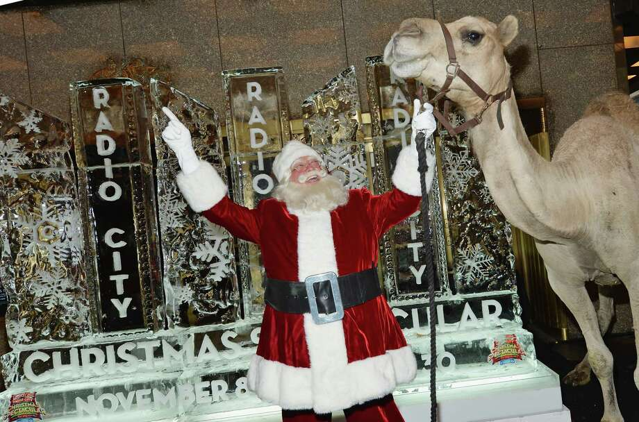 """Santa Claus poses for a picture with a camel as Radio City Christmas Spectacular Celebrates """"Christmas In August"""" at Radio City Music Hall on Aug. 13, 2013 in New York. Photo: Mike Coppola, Getty Images / 2013 Getty Images"""