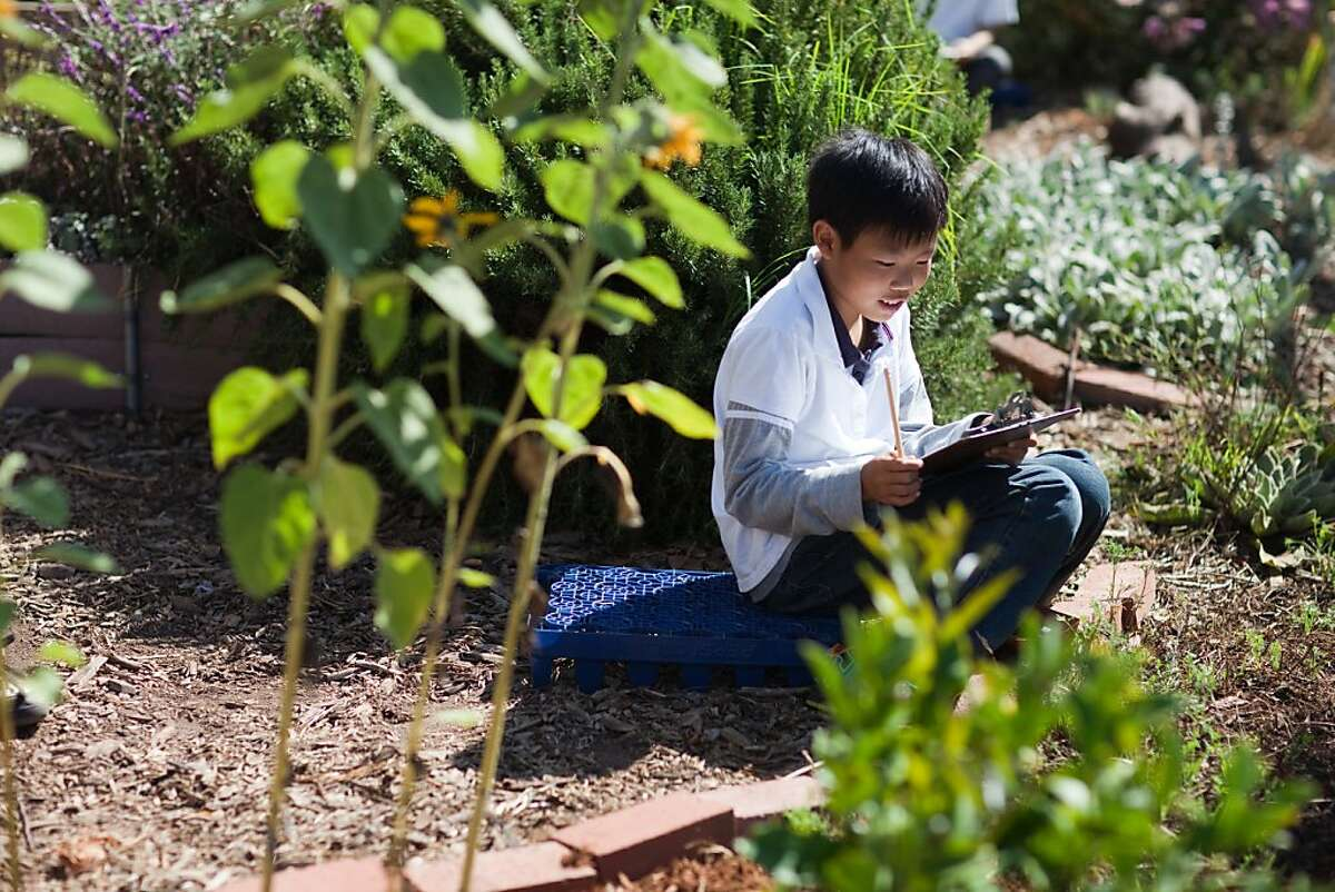 Education Outside has programs in 22 San Francisco schools teaching children about science and sustainability through gardening and cooking classes.