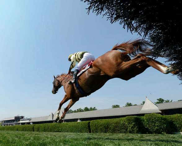 Italian Wedding with jockey Bernard Dalton in the saddle flies over the final fence and runs on to win The 72nd running of The New York Turf Writers Cup Thursday afternoon, Aug. 22, 2013, at Saratoga Race Course in Saratoga Springs, N.Y.  (Skip Dickstein/Times Union) Photo: SKIP DICKSTEIN