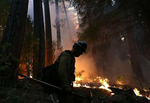 GROVELAND, CA - AUGUST 22:  A firefighter from the Colorado based Long Canyon Fire Department monitors a back fire while battling the Rim Fire on August 22, 2013 in Groveland, California. The Rim Fire continues to burn out of control and threatens 2,500 homes outside of Yosemite National Park. Over 1,000 firefighters are battling the blaze that was reduced to only 2 percent containment after it nearly tripled in size overnight.  (Photo by Justin Sullivan/Getty Images) Photo: Justin Sullivan, Getty Images