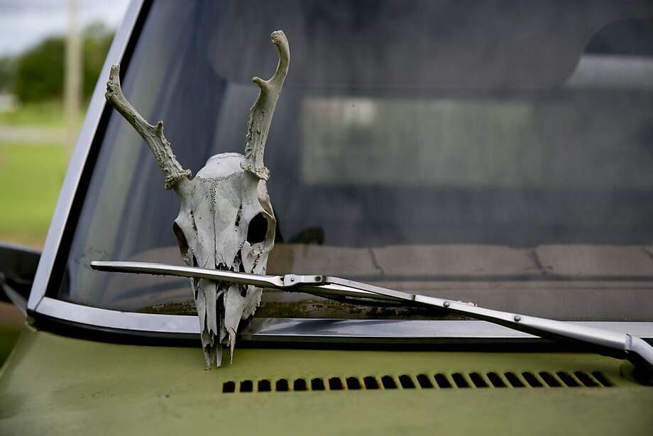 The old Ford hasn't been the same since she hit that buck back in '08: A pickup with an unusual ornament sits in a lot at Bullington Farms in Shoals, N.C. Photo: Andrew Harrer, Bloomberg