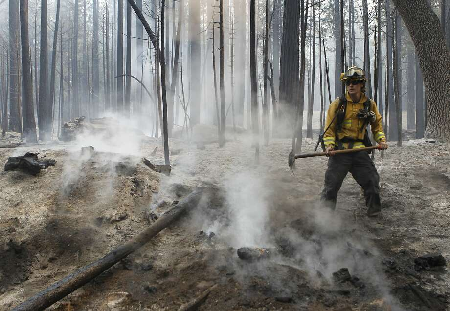 A firefighter uses a handtool to extinguish a hot spot from the Rim Fire near Camp Mather on Friday, Aug. 23, 2013. Burning near Yosemite National Park, the wildfire has scorched over 150 square miles of terrain. Photo: Paul Chinn, The Chronicle