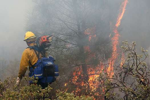 YOSEMITE NATIONAL PARK, CA - AUGUST 24: A firefighter walks by a burning bush while battling the Rim Fire on August 24, 2013 in Yosemite National Park, California. The Rim Fire continues to burn out of control and threatens 4,500 homes outside of Yosemite National Park. Over 2,000 firefighters are battling the blaze that has entered a section of Yosemite National Park and is currently 5 percent contained. (Photo by Justin Sullivan/Getty Images) Photo: Justin Sullivan, Getty Images