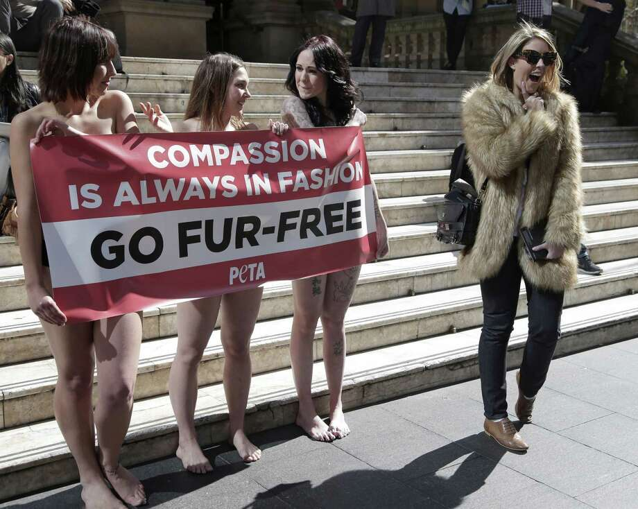 A passer-by, right, appears to mock anti-fur protesters Tanya Ward, left, Zoe Crawford and Jacqui House, right, who have stripped to their underwear in an attempt to persuade clothing designers to stop using animal fur in Sydney, Australia, Wednesday, Aug. 21, 2013. The protestors from PETA, People for the Ethical Treatment of Animals, are protesting at Sydney Town Hall where a fashion festival is set to begin. Photo: AP