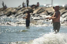 Rich Lucey, of Monroe, wades in the surf as he fishes for snapper blues by the seawall in Stratford, Conn. on Sunday, August 25, 2013.
