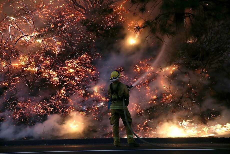 A firefighter hoses down the flamesof the Rim Fire near Groveland, Calif. The fire, 