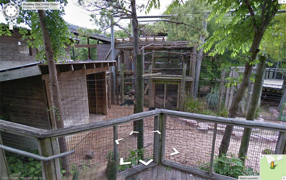Google Street view image  of the Houston Zoo.