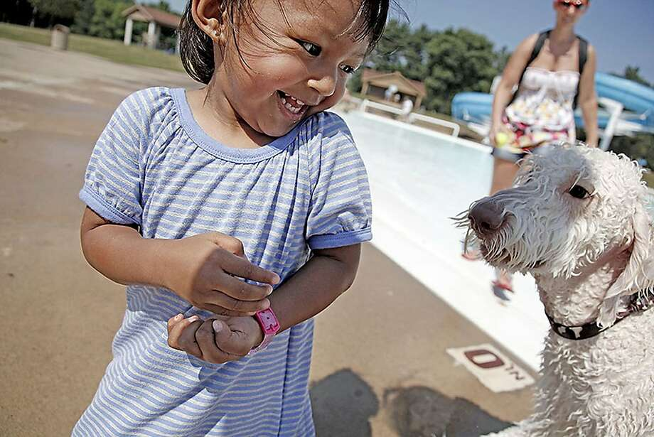He's so funny: Two-year-old Siona Kansakar finds a wet dog hugely amusing at the annual 