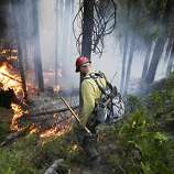 Firefighter Russell Mitchell monitors a back burn during the Rim Fire near Yosemite National Park, Calif., on Tuesday, Aug. 27, 2013. Unnaturally long intervals between wildfires and years of drought primed the Sierra Nevada for the explosive conflagration chewing up the rugged landscape on the edge of Yosemite National Park, forestry experts say. The fire had ravaged 282 square miles by Tuesday, the biggest in the Sierra's recorded history and one of the largest on record in California.
