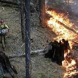 Firefighter Russell Mitchell, left, monitors a back burn during the Rim Fire near Yosemite National Park, Calif., on Tuesday, Aug. 27, 2013. Unnaturally long intervals between wildfires and years of drought primed the Sierra Nevada for the explosive conflagration chewing up the rugged landscape on the edge of Yosemite National Park, forestry experts say. The fire had ravaged 282 square miles by Tuesday, the biggest in the Sierra's recorded history and one of the largest on record in California.
