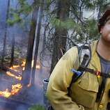 While monitoring a controlled backfire along Highway 120 at the southwestern edge of California's Yosemite National Park, Captain Russell Mitchell with Yosemite Fire glances up as a U.S. Forest Service firefighting aircraft flies overhead on Tuesday, August 27, 2013. (Don Bartletti/Los Angeles Times/MCT)