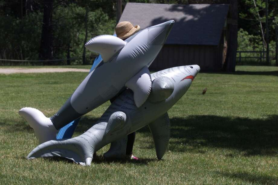 Inflatable pool toys are welcome at Camp Mather, and one of the few signs of modern times. There were no shark-shaped pool toys in the 1940s. I'm surprised these haven't been banned. Photo: Chris Stewart, The Chronicle