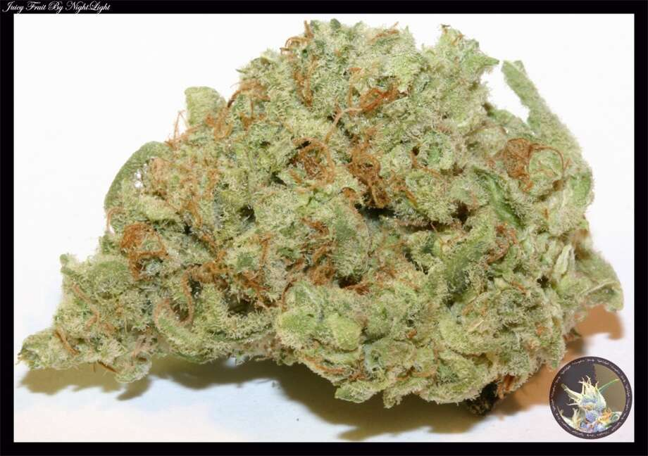 Juicy Fruit: A very common hybrid patients report can treat depression. Sweet-smelling, Thai in origin. Smells like fruit punch with a pretty flat taste. Patients report feeling energetic and chatty.